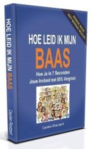 Boek Hoe Leid Ik Mijn Baas